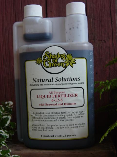 Shades of green - Organic flower fertilizer homemade solutions ...
